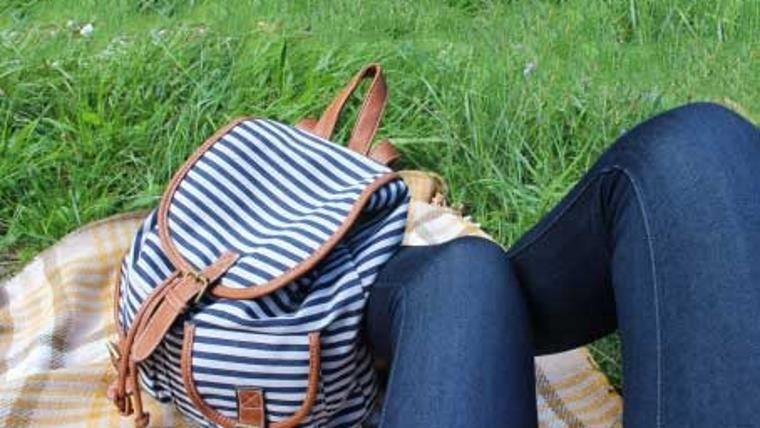 Picnic o un rato de descanso en el pasto.(ABCpedia)